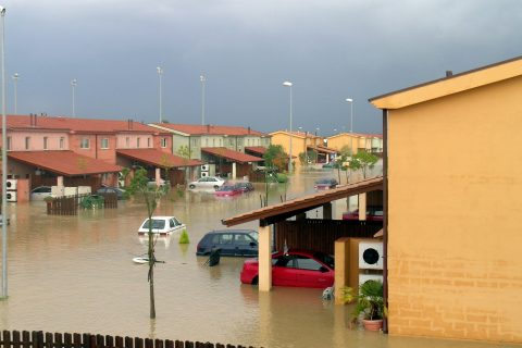 Flooded Neighbourhood before Recovering