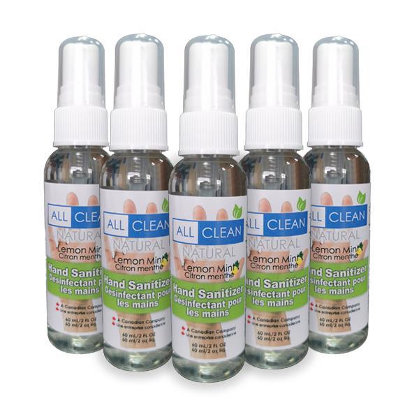 Hand Sanitizer – 60 ml Spray Bottle