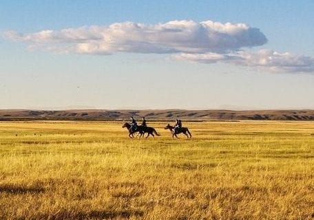 Horseback on the prairies