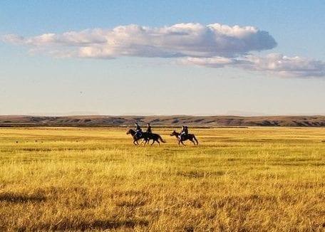Horseback on the prairies