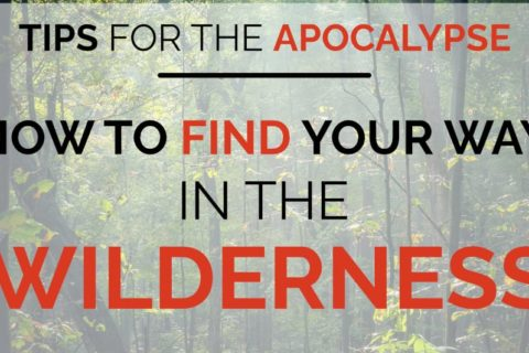 A forest background with text overlay that reads Tips for the Apocalypse: How to find your way in the wilderness.