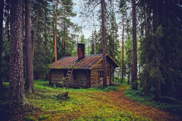 A remote cabin, the perfect place to wait out a zombie apocalypse