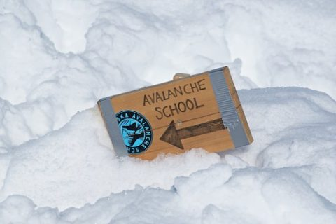 Avalanche Dos and Don'ts